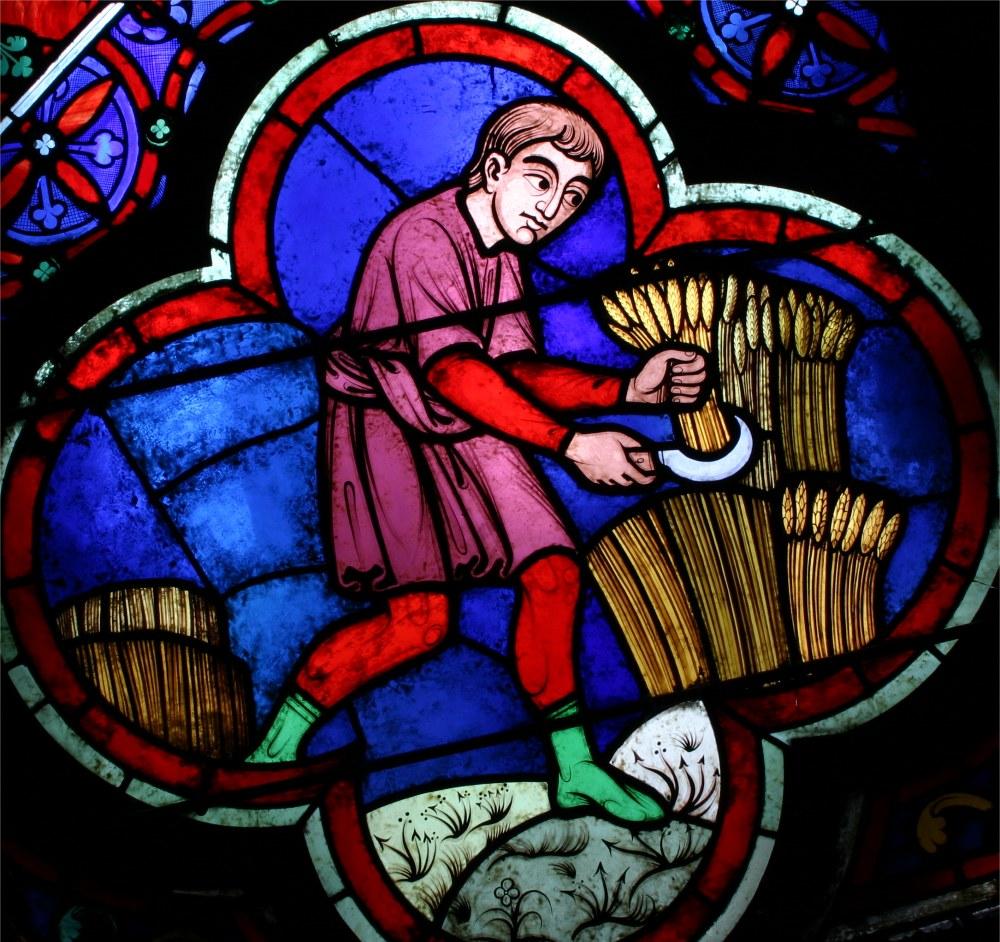 Cathédrale Notre Dame de Paris, vitrail de la moisson